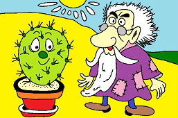 Old man and cactus
