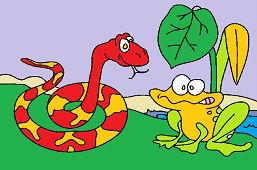 Hungry snake and frog