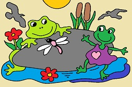 Frogs on a stone