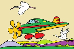 Aircraft and storks