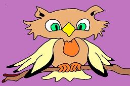 Owl Dorothy