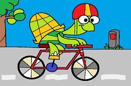 Turtle Sophia