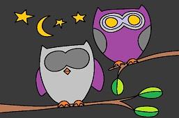 Big eyed owls