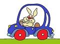 Rabbit in the car