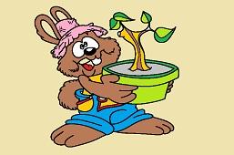Rabbit grower