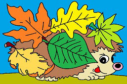 Hedgehog with leaves