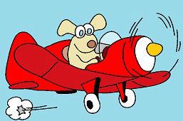 Dog on a plane