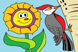 Sunflower and woodpecker