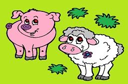 Lamb and piglet