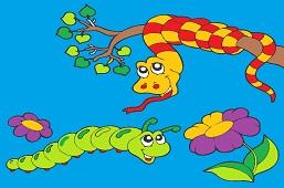 Snake and caterpillar