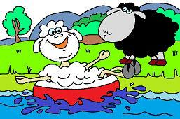 Sheep on the lake