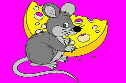 Mouse with tasty cheese