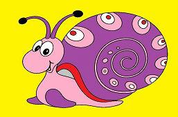 Snail Adam