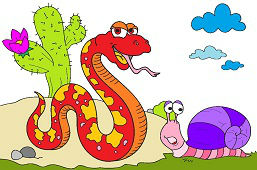 Big snake and snail