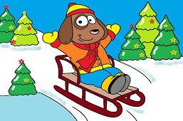 Dog on sledge