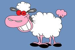Sheep Lisa
