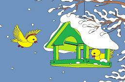Birds in feeder