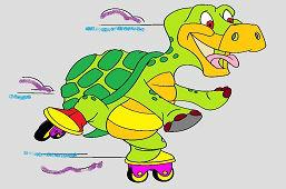 Turtle on skates